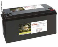 42 Batareya LiFePo4 s litievoj tehnologiej 12V 180Ah
