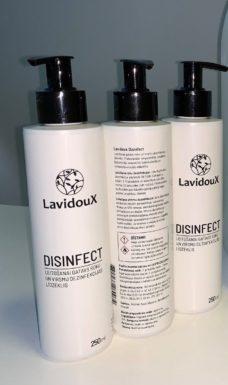 31 Dezinfitsiruyushhee sredstvo dlya ruk Lavidoux Disinfect vo flakone 250 ml s pompoj
