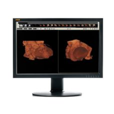 49 Radiologicheskij monitor WIDE CL24s